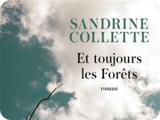 sandrine-collette-couv